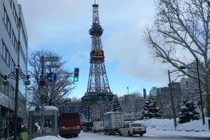 日本本州跨年半自由行6天游