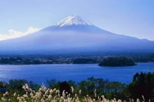 青岛到日本旅游推荐-日本奈良鹿公园、美山町 富士山亲子6日游