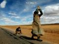 天津到西藏旅游费用_布达拉宫_西宁_青海湖_塔尔寺三卧八日游
