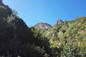 漫山·花溪谷