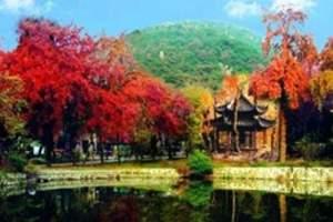 企业团队秋季旅游推荐:苏州天平山赏枫登山+烧烤一日游