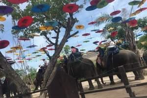 北京直飞清迈一地6天 一天自由活动 双龙寺+骑大象+玩竹筏