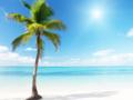 青岛去普吉观光旅行团-青岛去普吉岛6日观光旅行、2天自由行