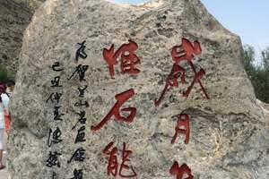 西夏陵+风情园、镇北堡西部影城、贺兰山岩画、枸杞园超值一日游
