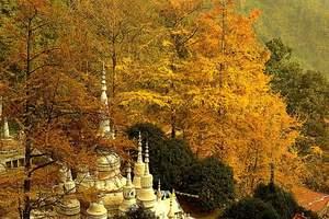 11月成都去大邑安仁古镇 白岩寺赏银杏一日游团购价格 佳城游