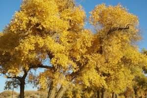 国庆节额济纳胡杨林-巴丹吉林沙漠-海森楚鲁怪石林摄影六日游