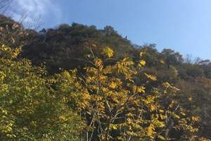 天津周边游,天津出发到蓟县九山顶一日游