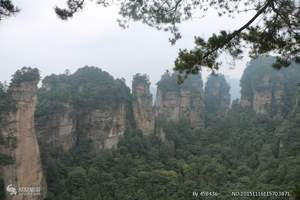 张家界凤凰古城、贵州铜仁万山地质公园(玻璃栈道)精华双飞5日
