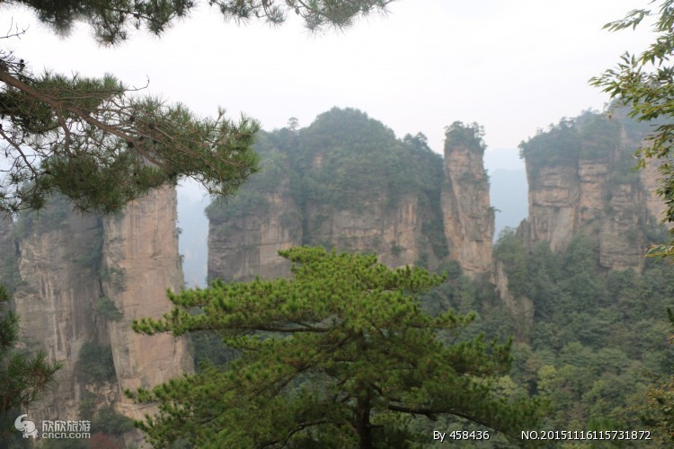 ※张家界森林公园+大峡谷+玻璃桥+天门山4天3晚跟团游