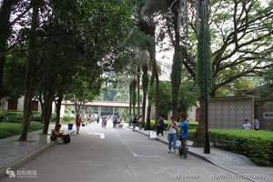 上海出发厦门鼓浪屿、南普陀、厦门大学、曾厝垵双飞4日游跟团游