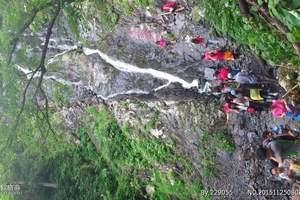 五常凤凰山二日游 凤凰山杜鹃花开放时间 凤凰山跟团旅游多少钱
