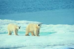 芬兰·圣诞老人村+破冰船+跨越北极圈+追寻极光国航直飞八天