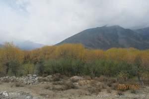 西藏拉薩自駕租車(包車)服務
