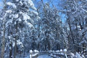 沈阳到吉林松岭雪村两日游<中国雪村松岭在哪,怎么去,多远>