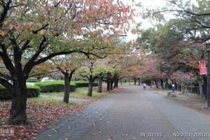 北京到日本七日游多少钱_去日本旅游多少钱_日本旅游攻略