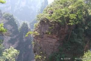 杭州出发湖南跟团游 张家界-天门山-凤凰古城双飞五日游