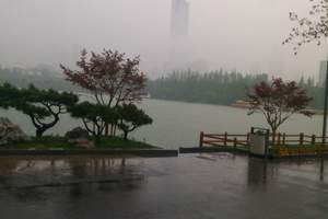 南京大报恩寺、夫子庙、南京博物馆、玄武湖公园2日游(送白酒)