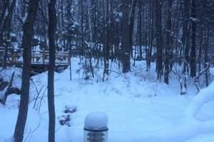 【五星元素】 哈尔滨 亚布力雅旺斯滑雪 金源渔猎文化风景5日