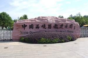 《周末直通车》西峡恐龙园、中原第一瀑布群龙潭沟汽车一游