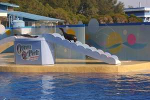 宁夏银川到香港海洋公园、迪士尼乐园纯玩5日游