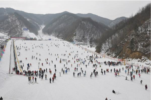 ★洛阳报名到栾川伏牛山滑雪场旅游团价格_洛阳附近的滑雪场