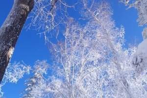 哈尔滨、雪乡、吉林雾凇岛双飞五天游(赠亚布力国际级滑雪)