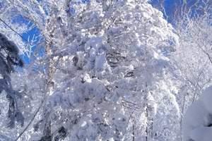 穿越冰雪/哈尔滨、东升雪谷、雪乡、长白山、镜泊湖双高6日