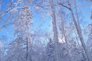 什么时间去雪乡比较好-雪乡两日游报价-17年雪乡旅游报价