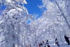 哈尔滨、亚布力、雪乡 虎峰岭、私家山庄5日游【完美东北D6】