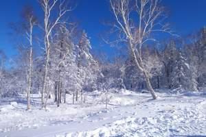 【哈尔滨—亚布力—哈雪谷穿越—雪乡—伏尔加庄园】 双飞六日游