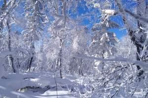 哈尔滨到雪乡二日游_中国雪乡二日游报价_中国雪乡两天旅游团