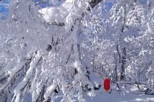【东北风情游】哈尔滨、亚布力滑雪、雪乡农家乐火车7日游