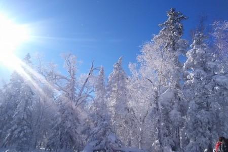 宜賓報名成都直飛【雪中的索菲亞-哈爾濱亞布力滑雪雙飛5日游】