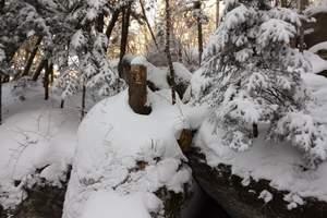 中国第一雪岭--虎峰岭2日游_哈尔滨出发到亚布力虎峰岭