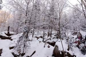 [东北]黑龙江哈尔滨双卧5日游_中国雪乡、梦幻家园、大雪谷
