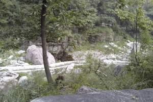 河源黄龙岩畲族表演、九连山原始森林度假村、月鸣湖环湖两日游