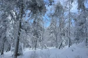 老里克湖冰雪节-汪清到老里克湖一日游_和龙老里克湖门票多少钱