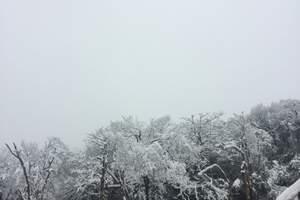 广安出发到金佛山+神龙峡二日游滑雪之旅
