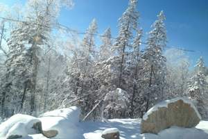 吉林雾凇岛朝鲜民俗村魔界长白山雪乡二浪河亚布力哈尔滨6日游G