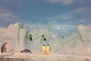 新乡到月坨岛、滦州古城、天津海昌极地海底世界贵纯玩双卧5日游