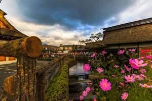 5月份郑州到日本旅游_郑州出发至日本旅游团_日本全景6日游