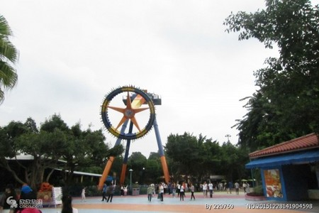 广州长隆高铁三日游(野生动物园,欢乐世界)
