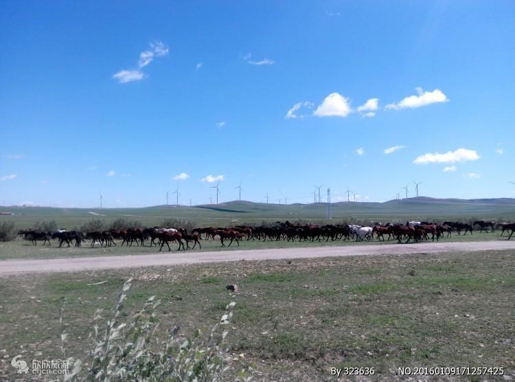 """新疆旅游景点线路资讯介绍 博文详情  昭苏县围绕全域旅游发展的""""两区"""