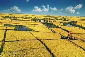 胜天生态农庄