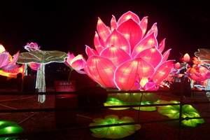 莲花湖灯会