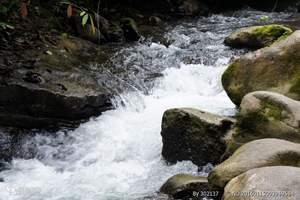 靖西渠洋湖,鹅泉,三叠岭瀑布,古龙山峡谷精华纯玩二日游