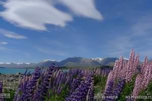 河南郑州到新西兰旅游团|新西兰南北岛十日|新西兰旅游签证办理