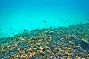 银川到帕劳旅游/银川出发到帕劳海洋文化体验四晚5日游