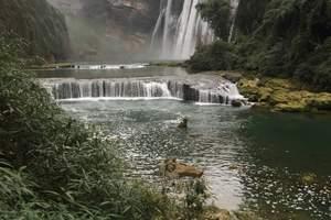 黄果树大瀑布、兴义马岭河大峡谷、双乳峰双飞六日游