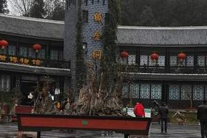 贵州旅游、织金洞一日游
